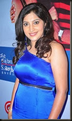 Manam Nilluna Nikkadhadi Movie Audio Launch Stills