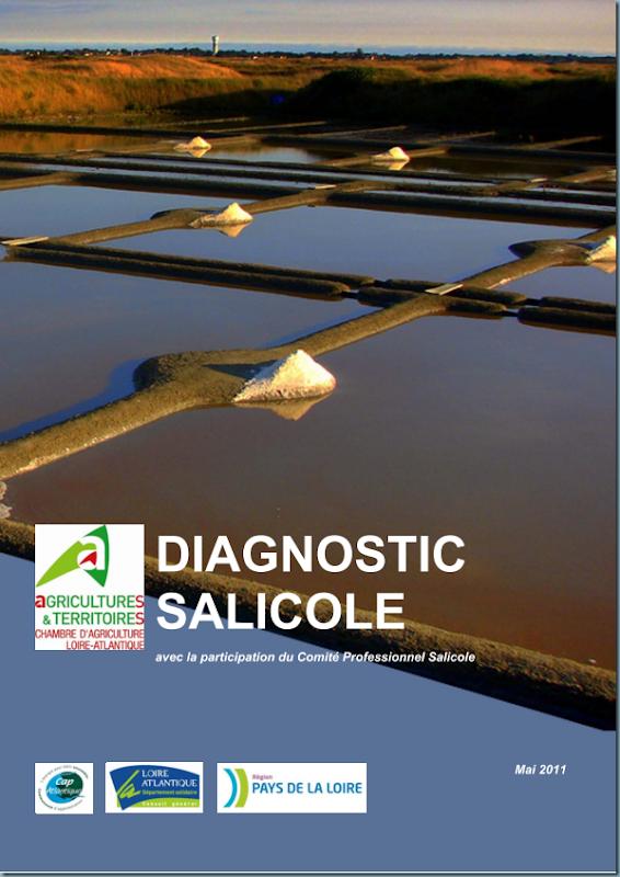 diagnostic_salicole_ca44_2011_page_001