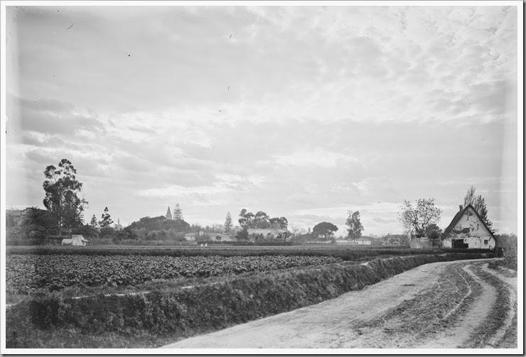 1900_la huerta