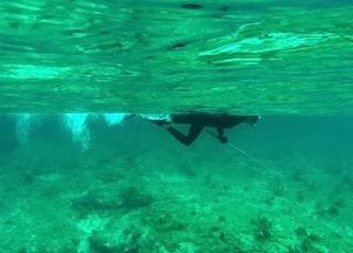 Joespearfishing