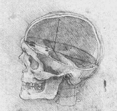 Leonardo da Vinci (17).jpg