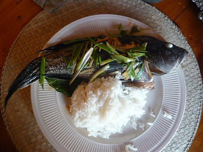 Asian Steam Striped Bass with Rice
