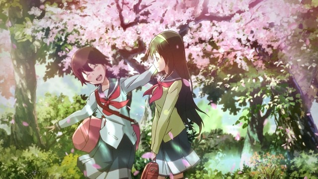 Natsuki and Kahori walk to school in the spring morning light, a large cherry blossom in the background