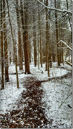 Snow 02 (16)