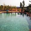 piscine bois modern pool 29.jpg