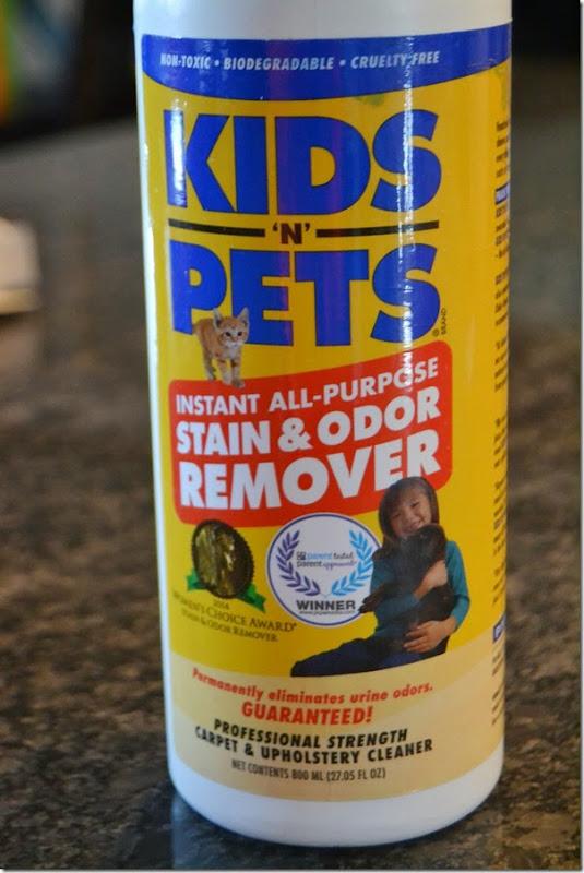 My-favorite-carpet-cleaner (1)