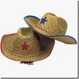 1domar caballo cowboys (2)