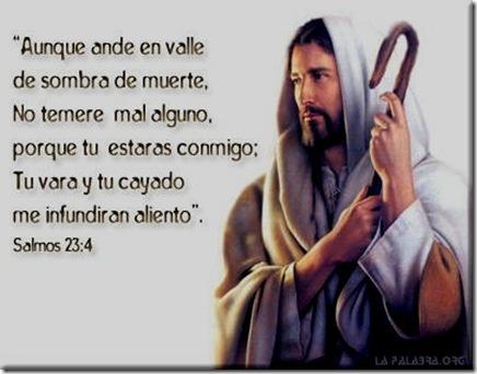 Salm23-ETL-0600