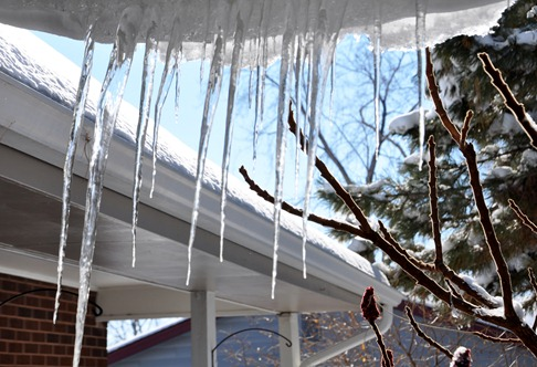 2012-02-05 icicles 3.jpg