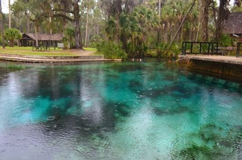 Juniper Springs on a rainy day