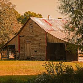 Cajun Barn by Ron Olivier - Buildings & Architecture Architectural Detail ( cajun barn )
