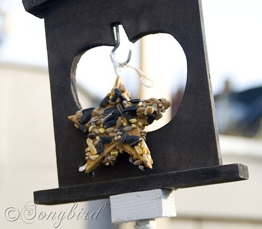 Bird Feed Chandelier 3