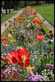 W-residence-flowers_edited-1_thumb2