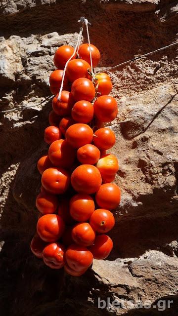 Ντοματάκια στα Μεστά