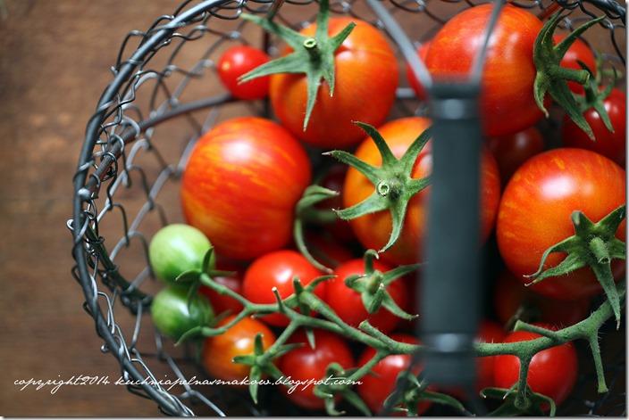 pomidory na tarasie (11)