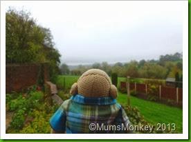 PE Lady's mum's garden