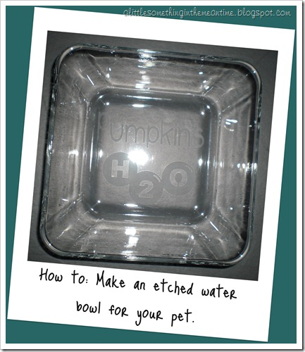 Etched Water Bowl How To