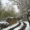 2013-sotosalbos-nieve9.jpg