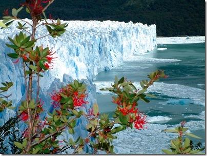 Patagonia%20Argentina%2002