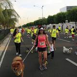Pet Express Doggie Run 2012 Philippines. Jpg (111).JPG