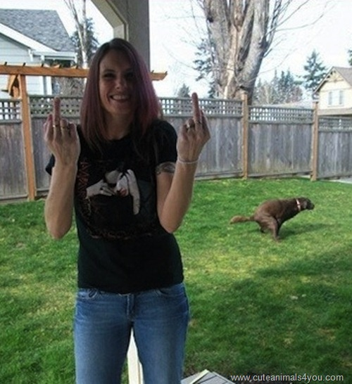 50_Funniest_Animal_Photobombs_Of_All_Time_27