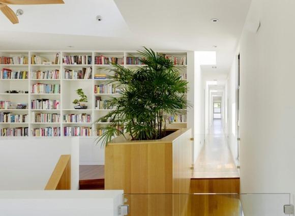 Plantas de interior puede iluminar un pasillo frío