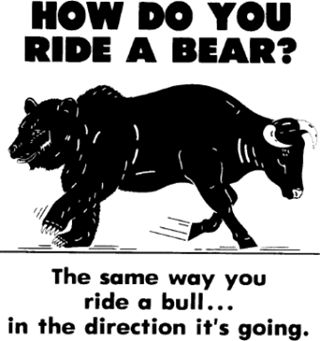How do you ride a bear market
