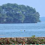 20140818_松島海浜公園