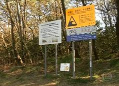 A placa alerta: em caso de tsunami, é preciso correr para um lugar alto.
