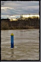 Ebro 20150225 (4)