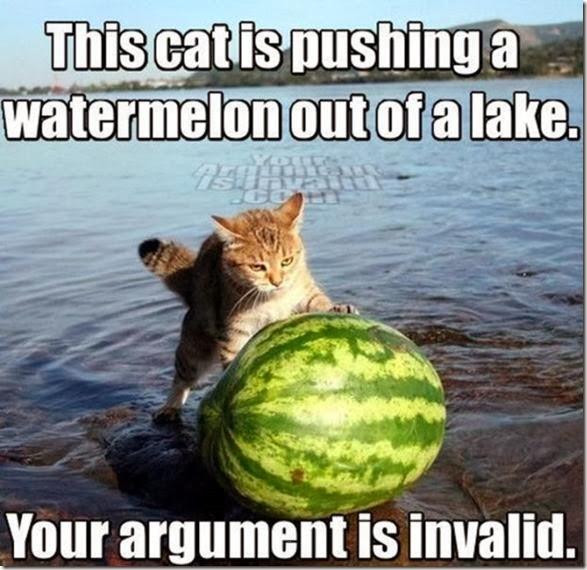 argument-invalid-41