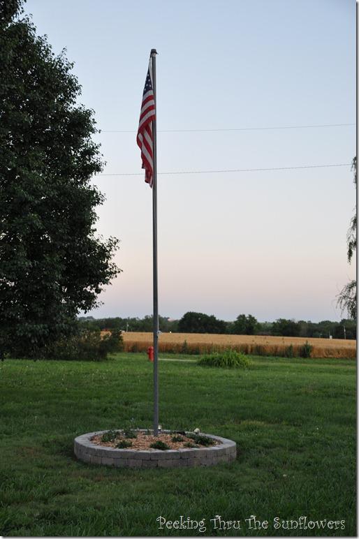 wheat field 001