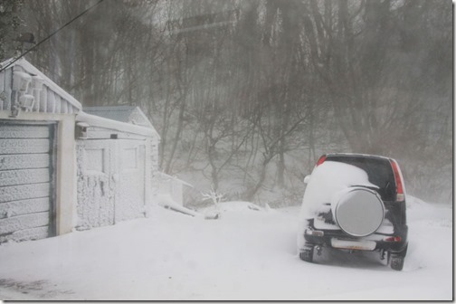 2-snow