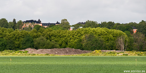 bild på snöhögen på Kungsängen från öster, juni