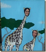 me and katrina as giraffes