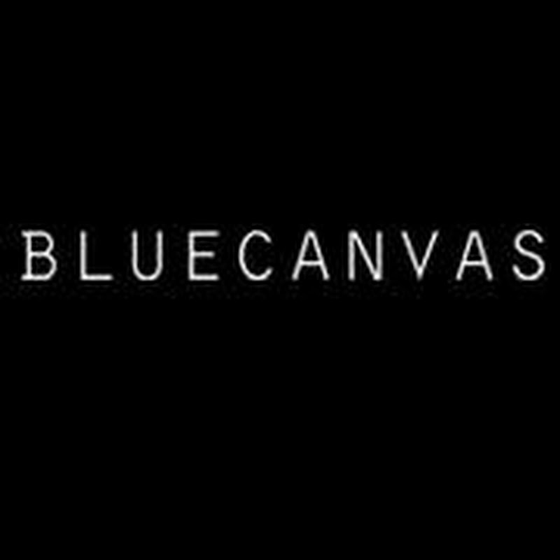 BlueCanvas Review and Tutorial to Setup Portfolio