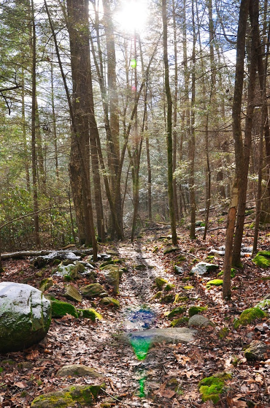 coker creek falls-4277