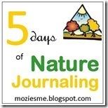naturejournaling_thumb1_thumb2