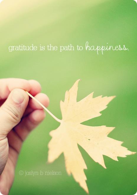 gratitude 2011web