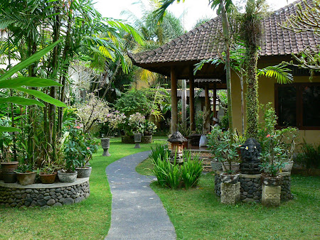 Exotic garden in Ubud