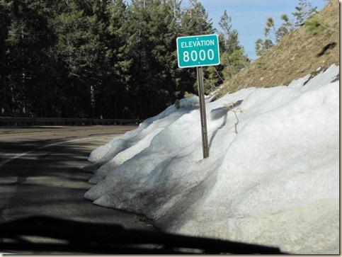 Tucson Drive & Mt. Lemmon 030