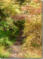 benmore steps