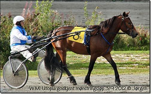 2012_mønstringsløp-3sept_01