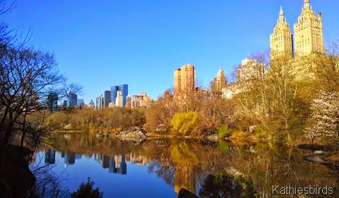 6. 4-24-14 Central Park