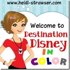 DD color button