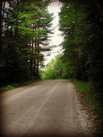 Pinegrove 2012