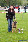 20100513-Bullmastiff-Clubmatch_30971.jpg