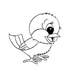 4vogel.jpg