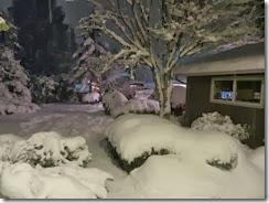 snowy Saturday 15