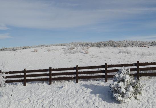 Dec Snow-1